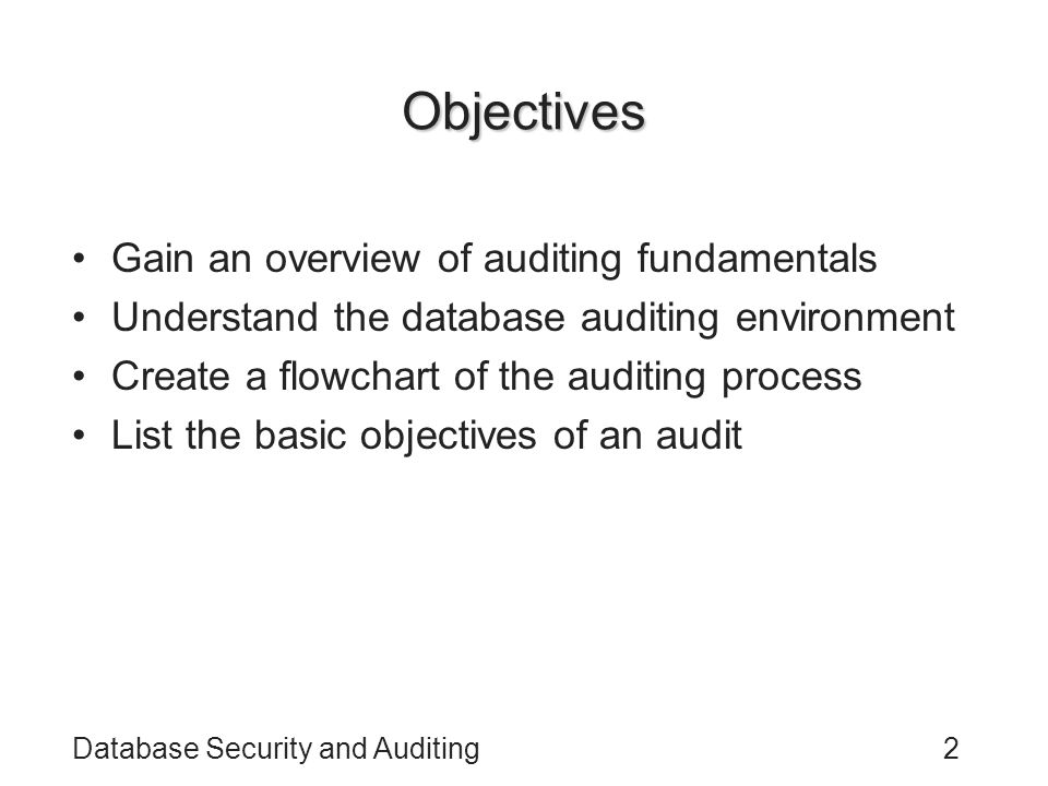 Objectives Gain an overview of auditing fundamentals