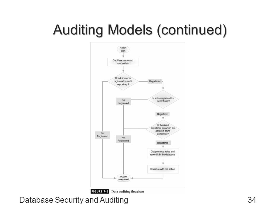 Auditing Models (continued)