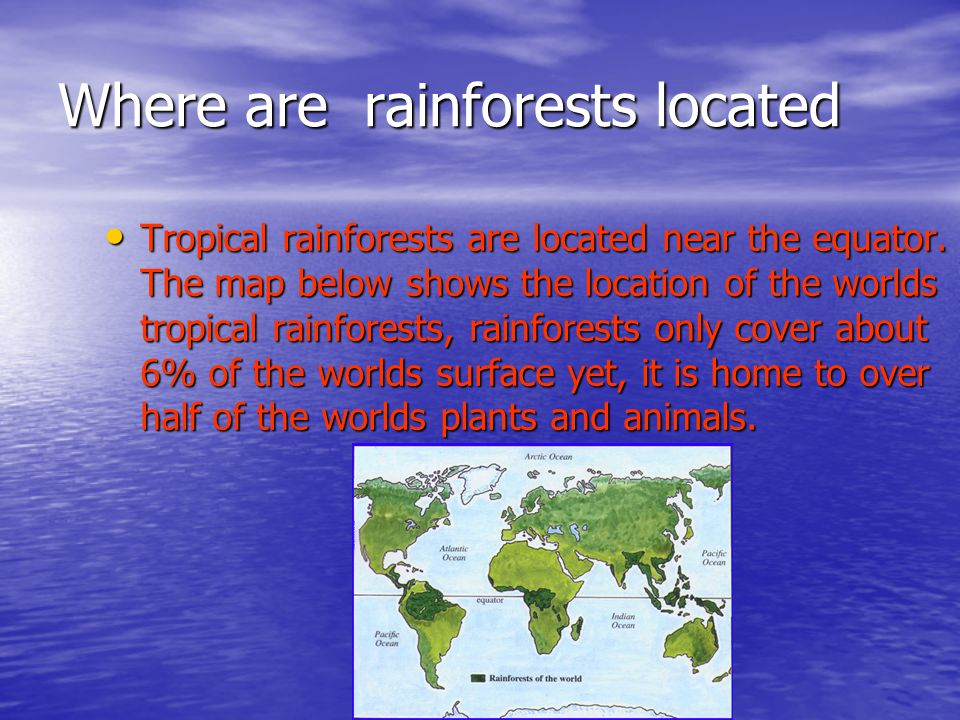 The rainforest by chloe tobin ppt video online download where are rainforests located sciox Image collections
