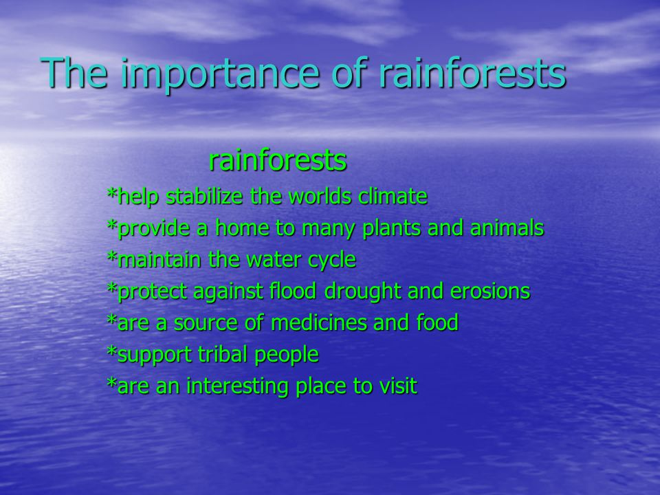 te importance of rainforests Importance of rainforests the main benefit of rainforests is that they supply much of the earth's oxygen they absorb carbon dioxide produced by man made activities and produce oxygen on which all humans and animals survive.