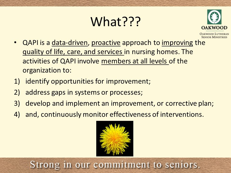 QAPI – Performace Improvement for Long Term Care ppt video