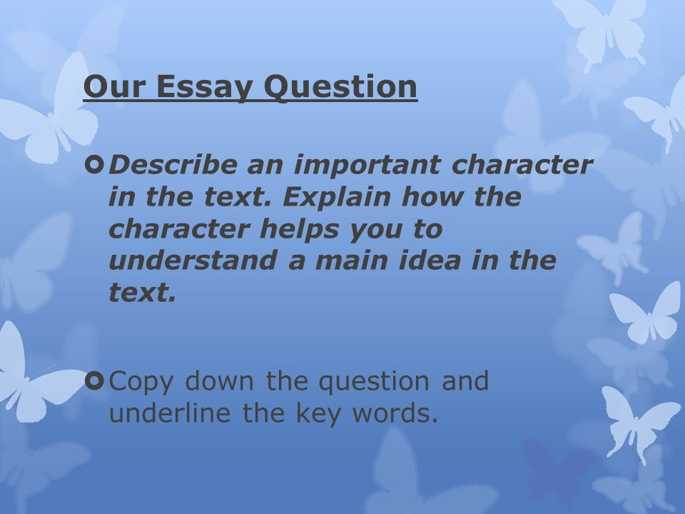 Our Essay Question Describe an important character in the text. Explain how the character helps you to understand a main idea in the text.