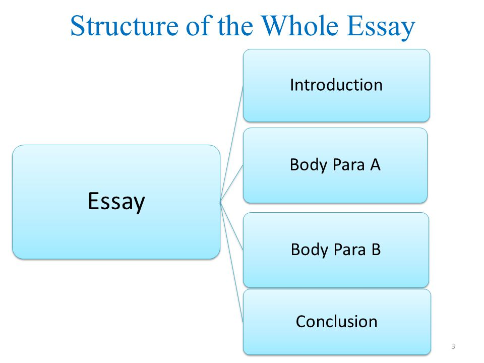 High School Senior Essay  Essay Examples For High School Students also Essay On Science And Technology Difference Between Race Ethnicity Essay Business Essay Structure