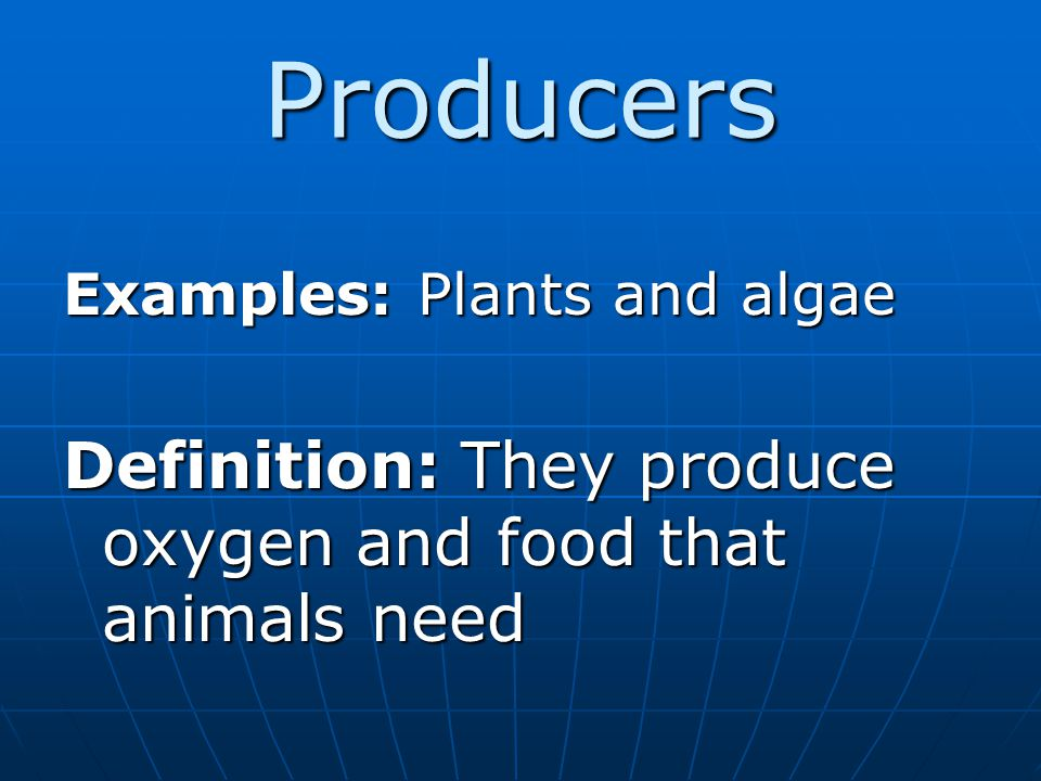 Producers Definition: They produce oxygen and food that animals need