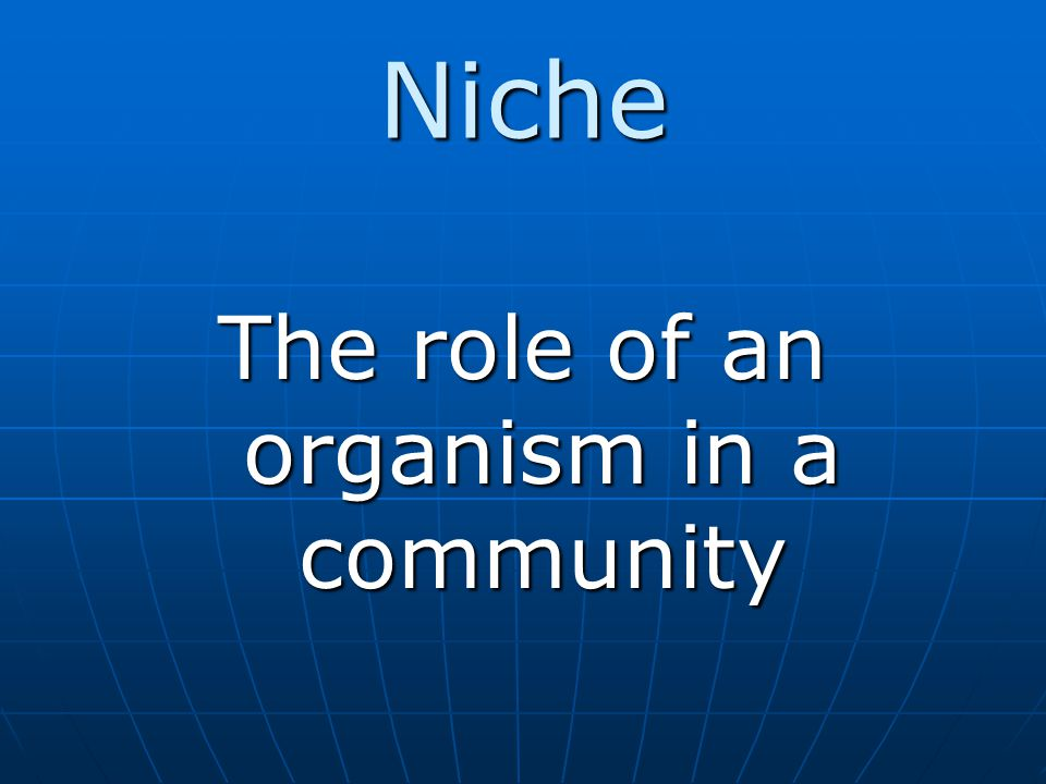 The role of an organism in a community