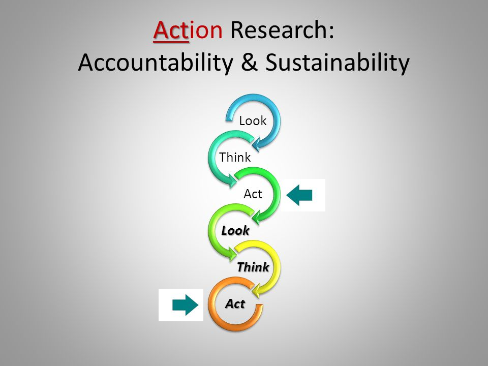 Action Research: Accountability & Sustainability