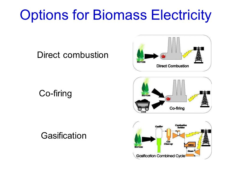 Options for Biomass Electricity