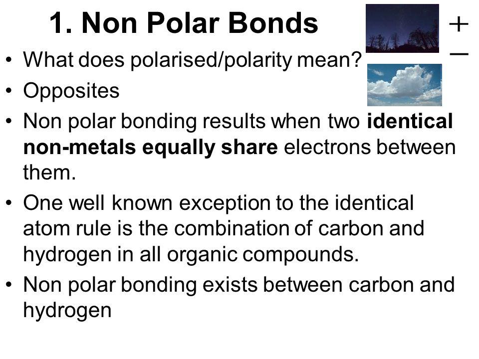 polar opposites mean