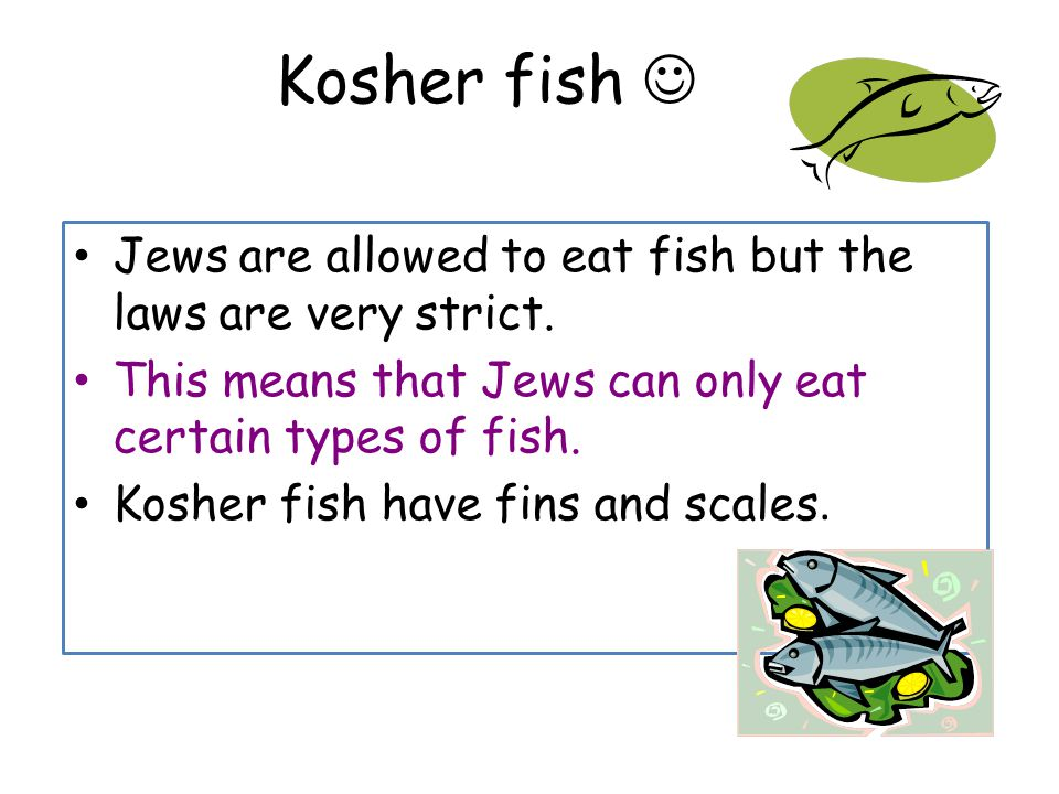 Ner tamid the ark menorah bimah torah starter activity for List of fish with fins and scales