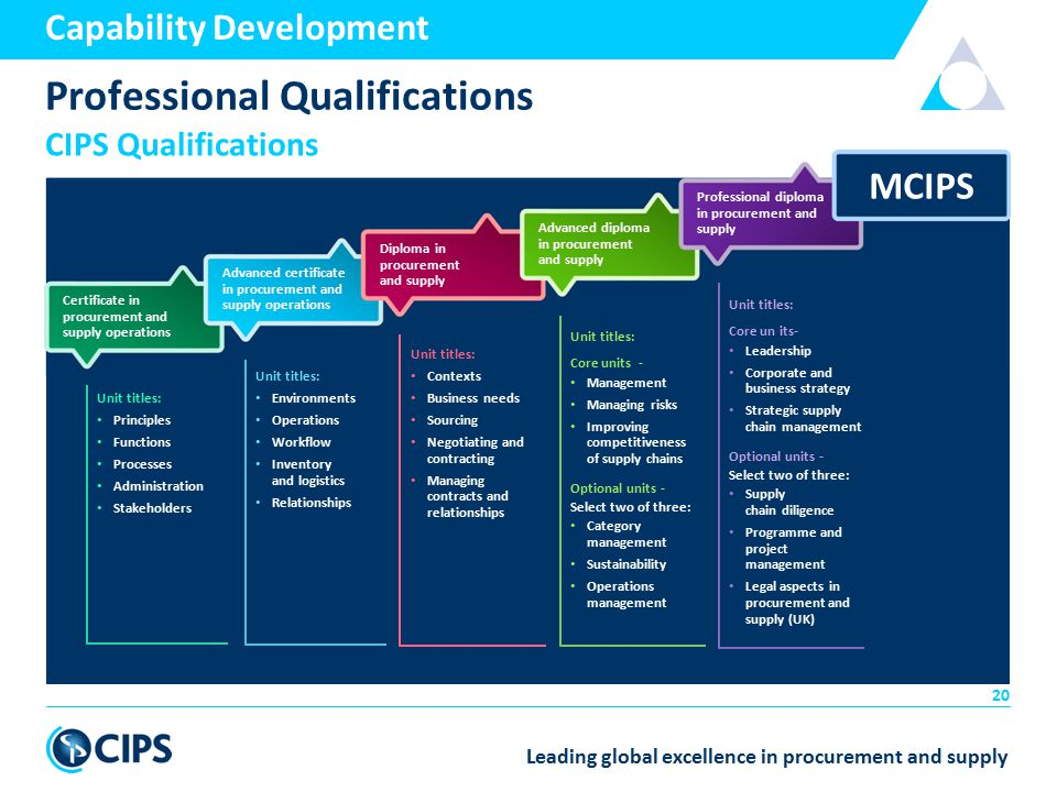 Pdf - Chief operating officer qualifications ...