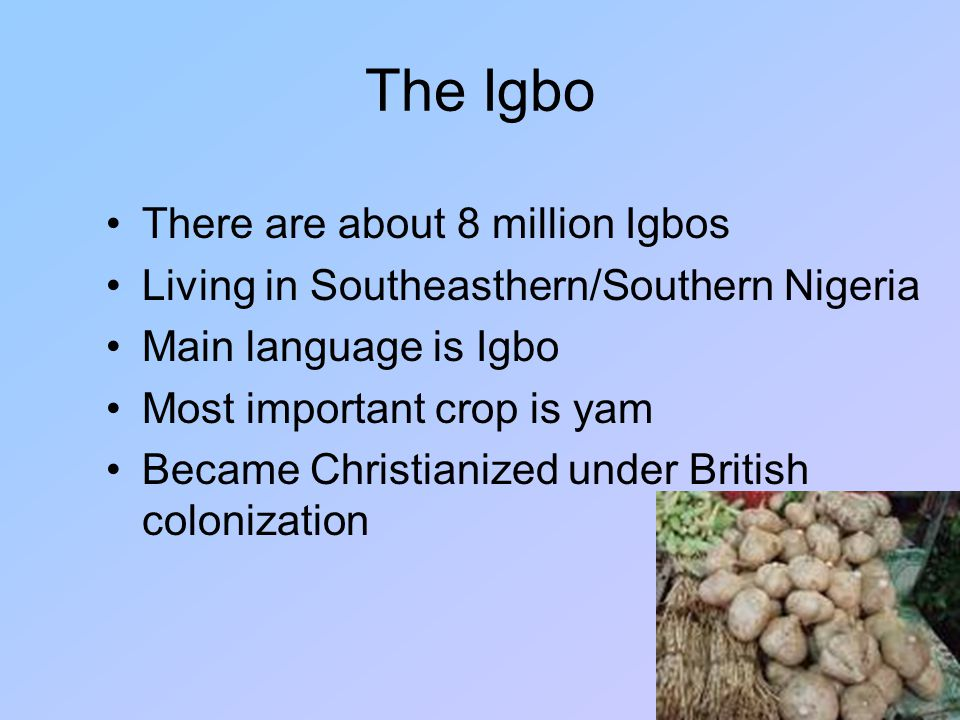 The Igbo There are about 8 million Igbos