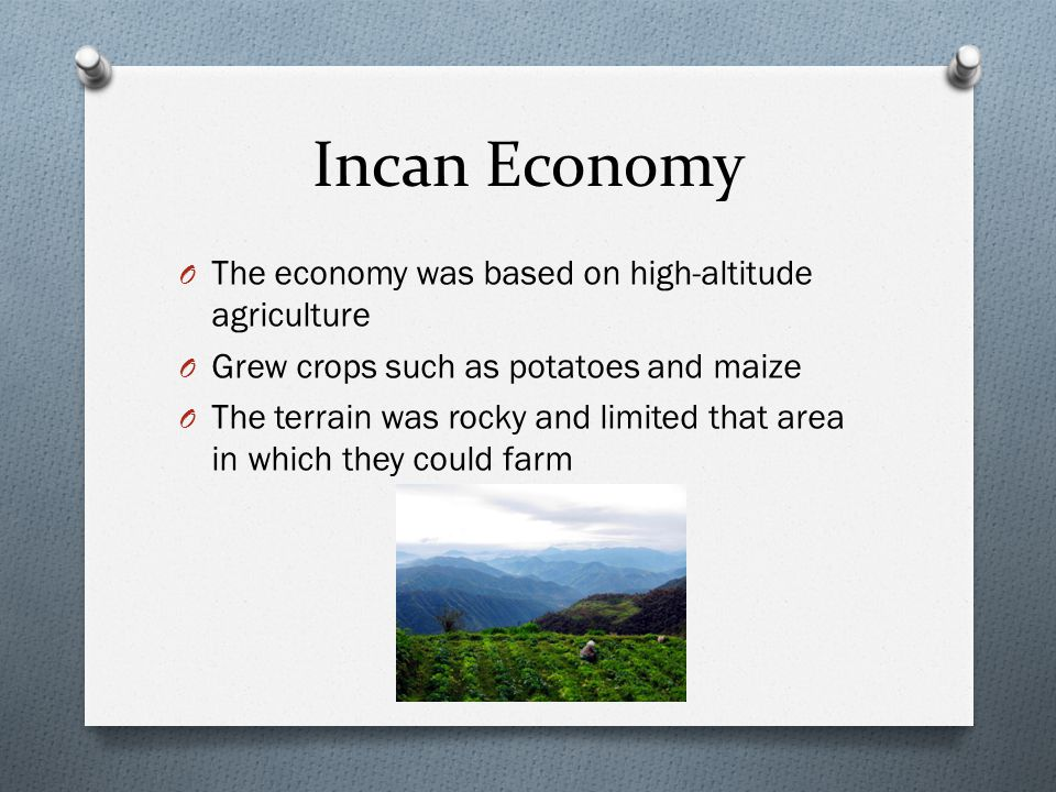 Incan Economy The economy was based on high-altitude agriculture