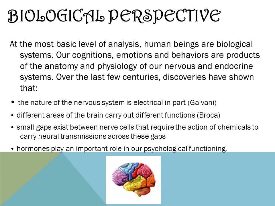 discuss biological or psychological methods of Discuss the use of brain imaging technologies in investigating the relationship between biological factors and behavior graded 7 excellent revision the following is a plain text extract of the pdf sample above, taken from our psychology biological loa notes.