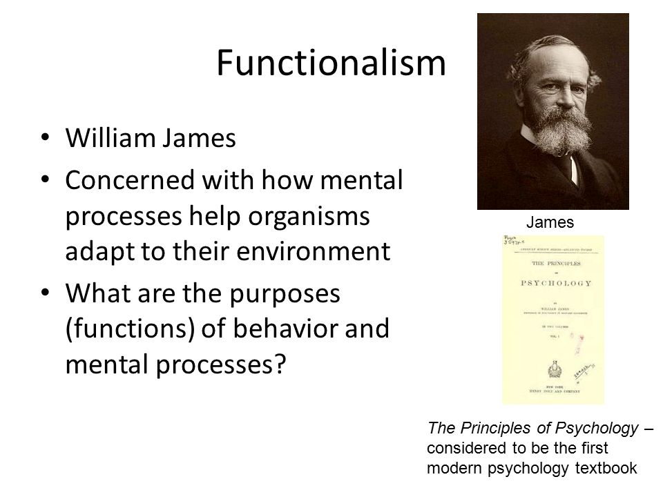 the influence of structuralism and functionalism on modern psychology Structuralism v functionalism in psychology  james' functionalism gave rise to the modern field of  two early approaches: functionalism and structuralism related .
