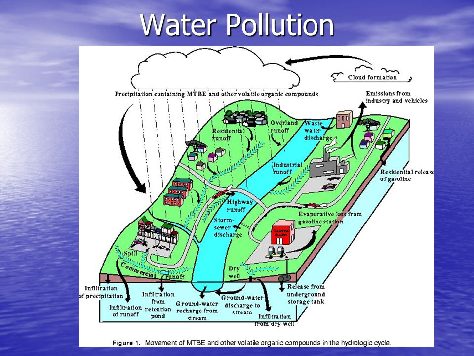 Water Pollution in the Jamaican Society Paper