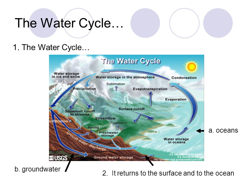 The Water Cycle A Oceans B Groundwater