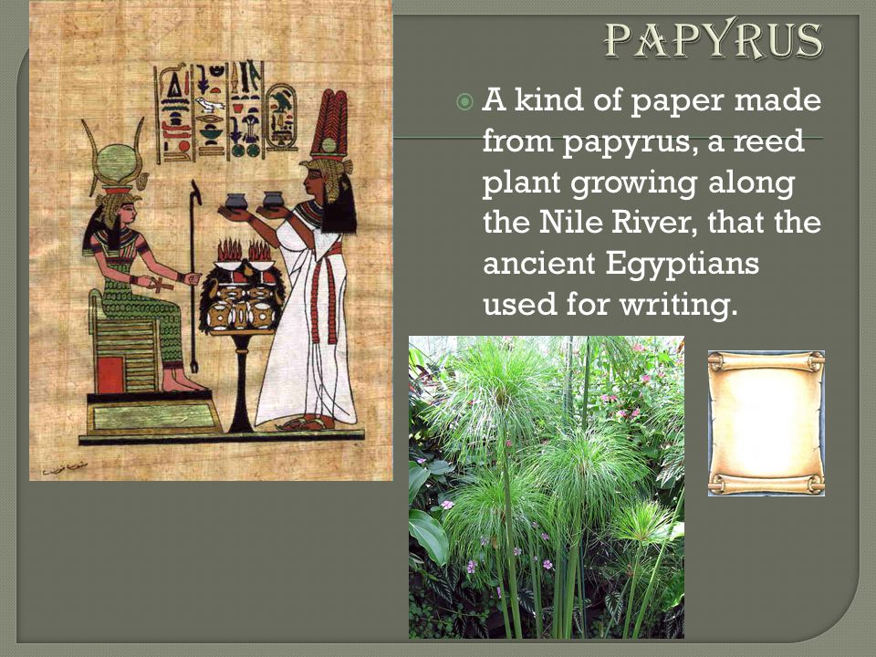 the nile river paper The nile river certainly shaped egypt egypt in many ways was the nile its bountiful resources and geographic location enabled ancient egypt to prosper for thousands of years peoples, kingdoms and empires rose and fell numerous times throughout the known world while egypt with but a very few.