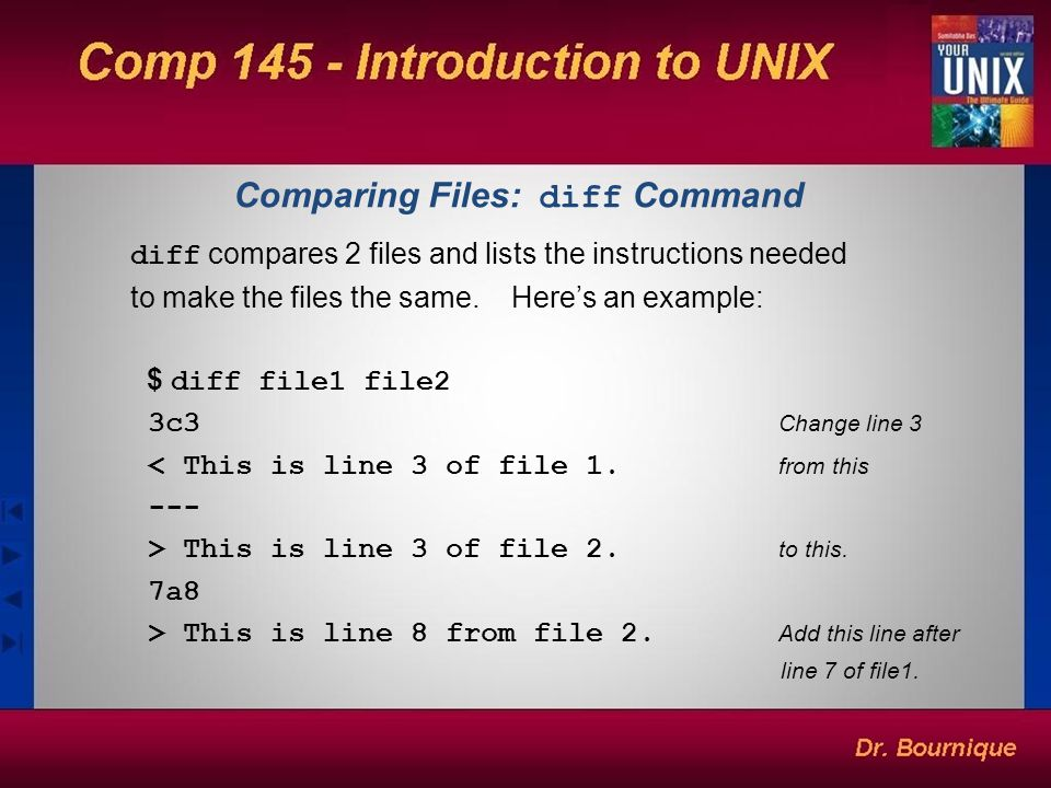 unix filters and commands pdf