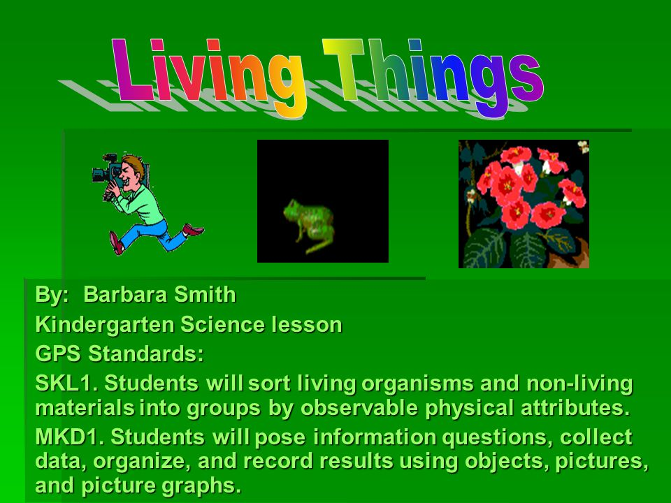 explain how to sort living things