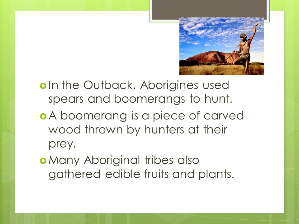 In the Outback, Aborigines used spears and boomerangs to hunt.