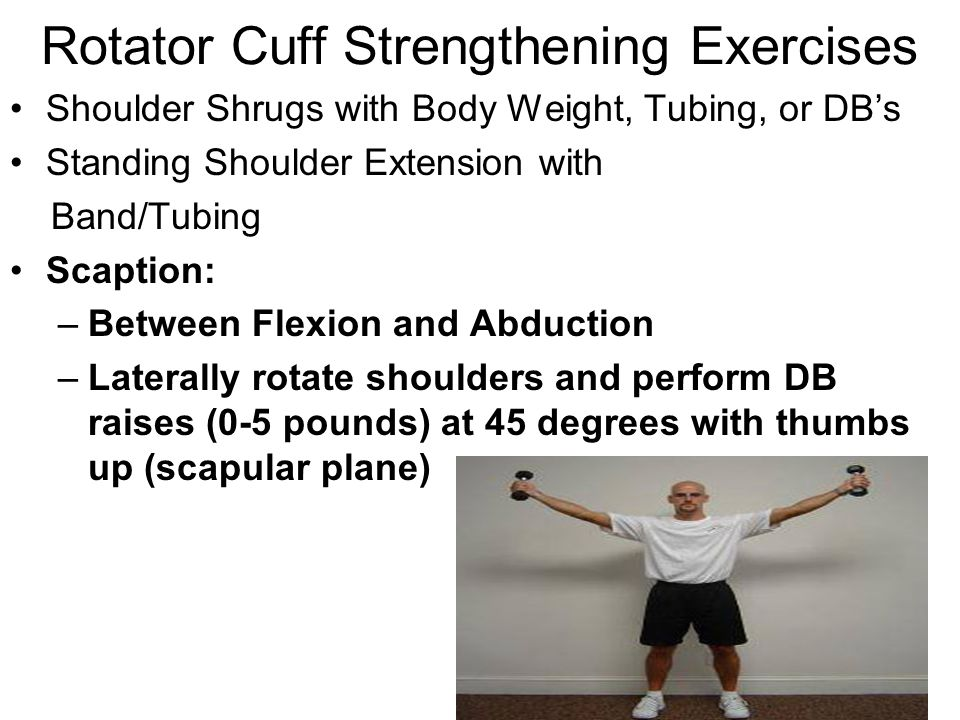 Rotator Cuff Muscles. - ppt video online download