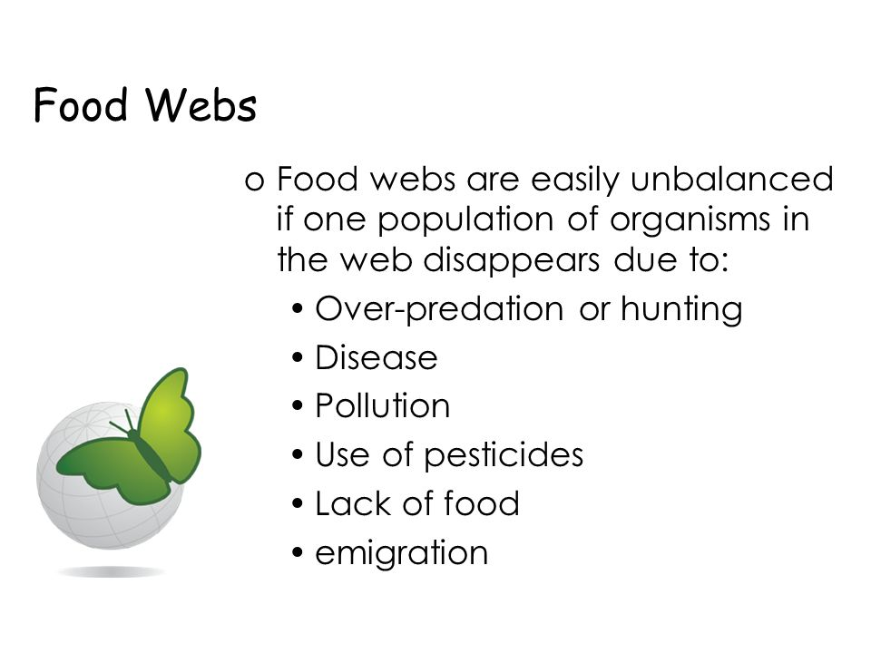 unbalance of food chain How do humans affect ecosystems  and animals from natural ecosystems and this can also unbalance them  threatened and unbalance food webs [food web: several food chains linked .