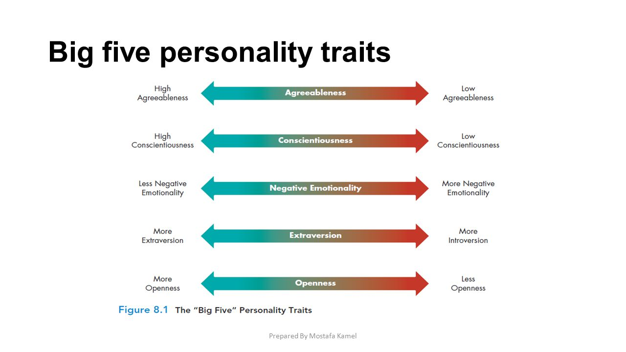The big five personality traits and what they mean to psychologists