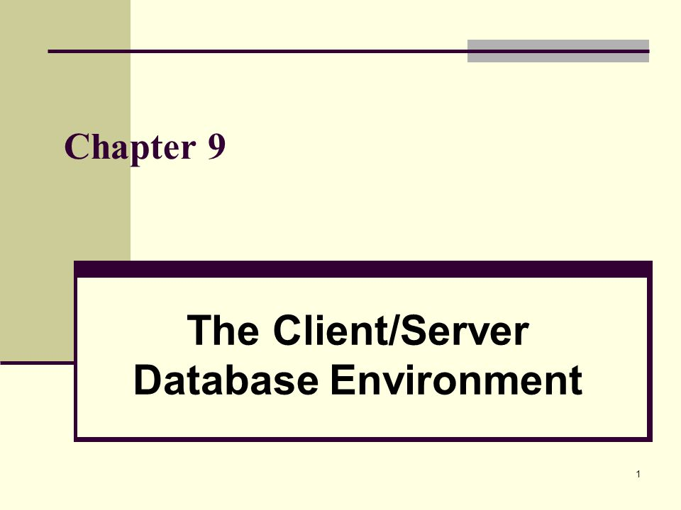 The Client/Server Database Environment