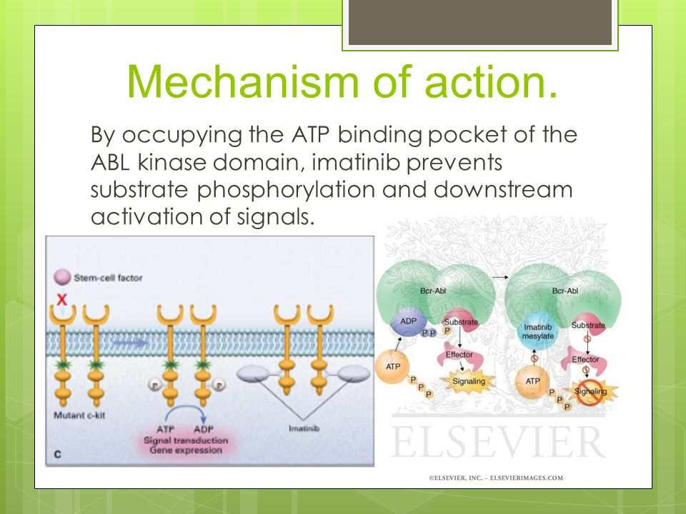 Mechanism of action.