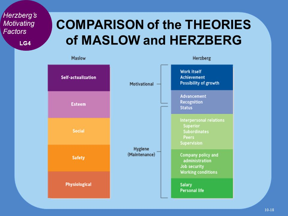 difference between douglas mcgregor theory and herzberg s theory Frederick herzberg- background wiki frederick herzberg  douglas mcgregor's xy theory, managing an x theory boss, and william ouchi's theory z.