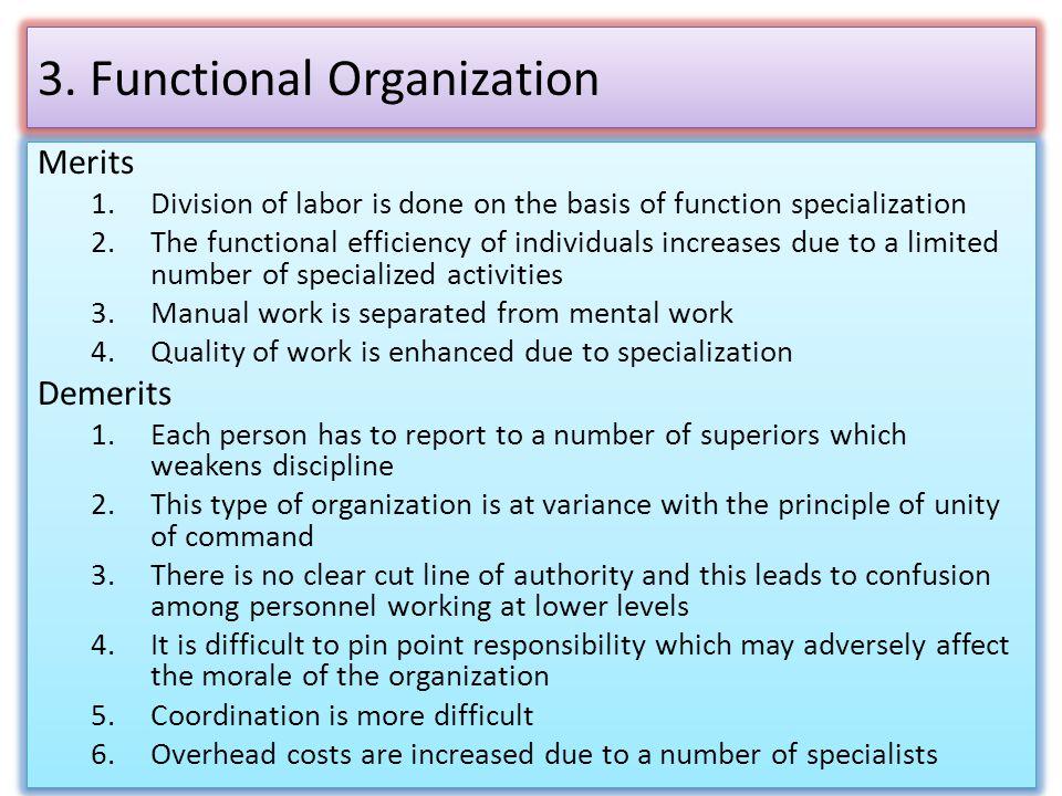 3. Functional Organization