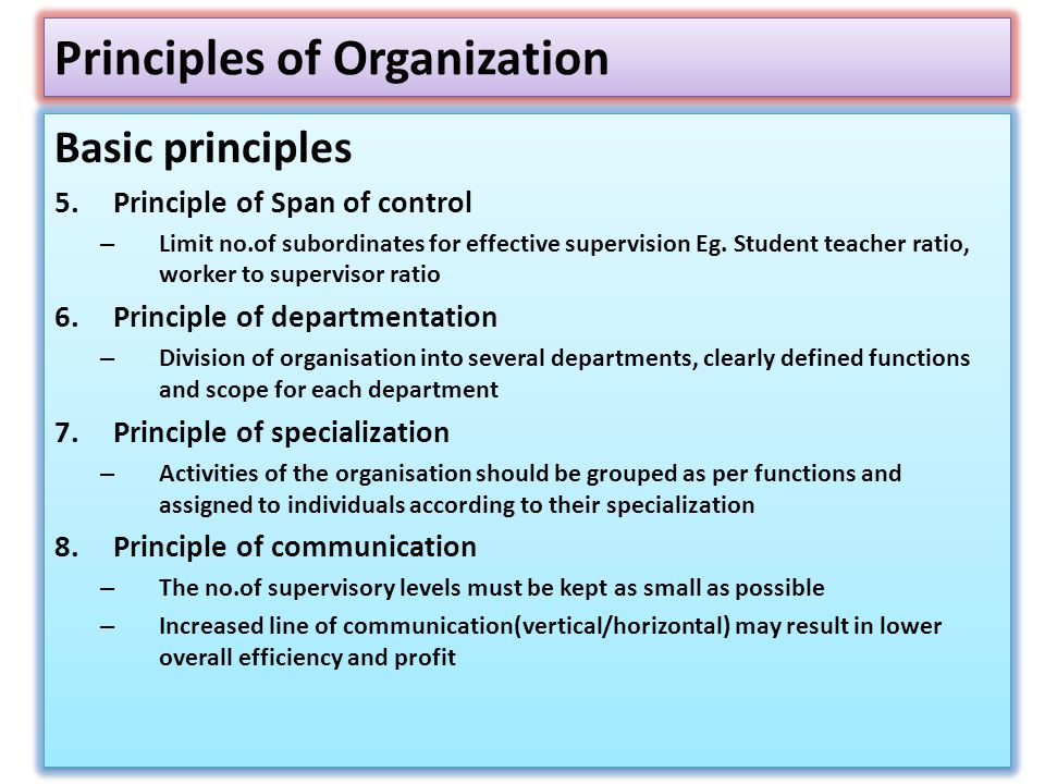 Principles of Organization