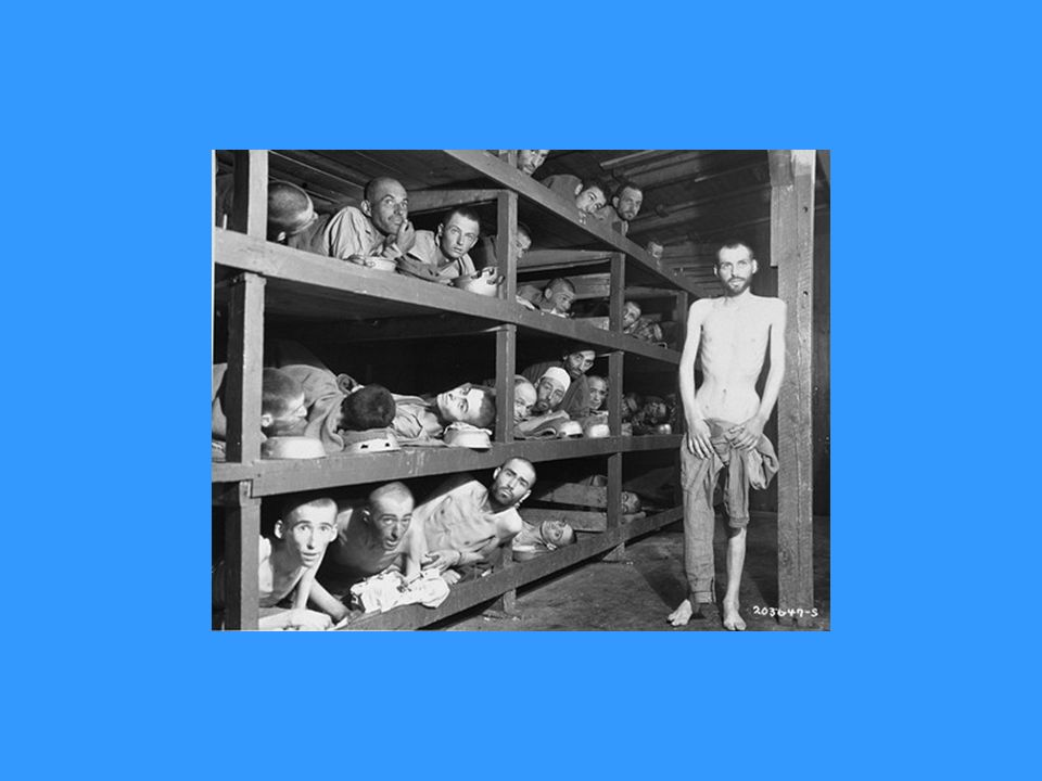 Former prisoners of the little camp in Buchenwald stare out from the wooden bunks in which they slept three to a bed.