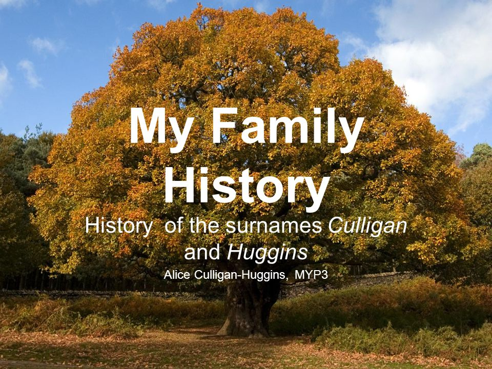 My Family History History Of The Surnames Culligan And. Word 2010 Brochure Template. Examples Of Dental Assistant Resumes. Simple Partnership Agreement Template Free. Restaurant Manager Resume Objective. Microsoft Access Database Template. Microsoft Word Invoice Template. Sample Awards For Employees Template. Tracking It Works Order Template