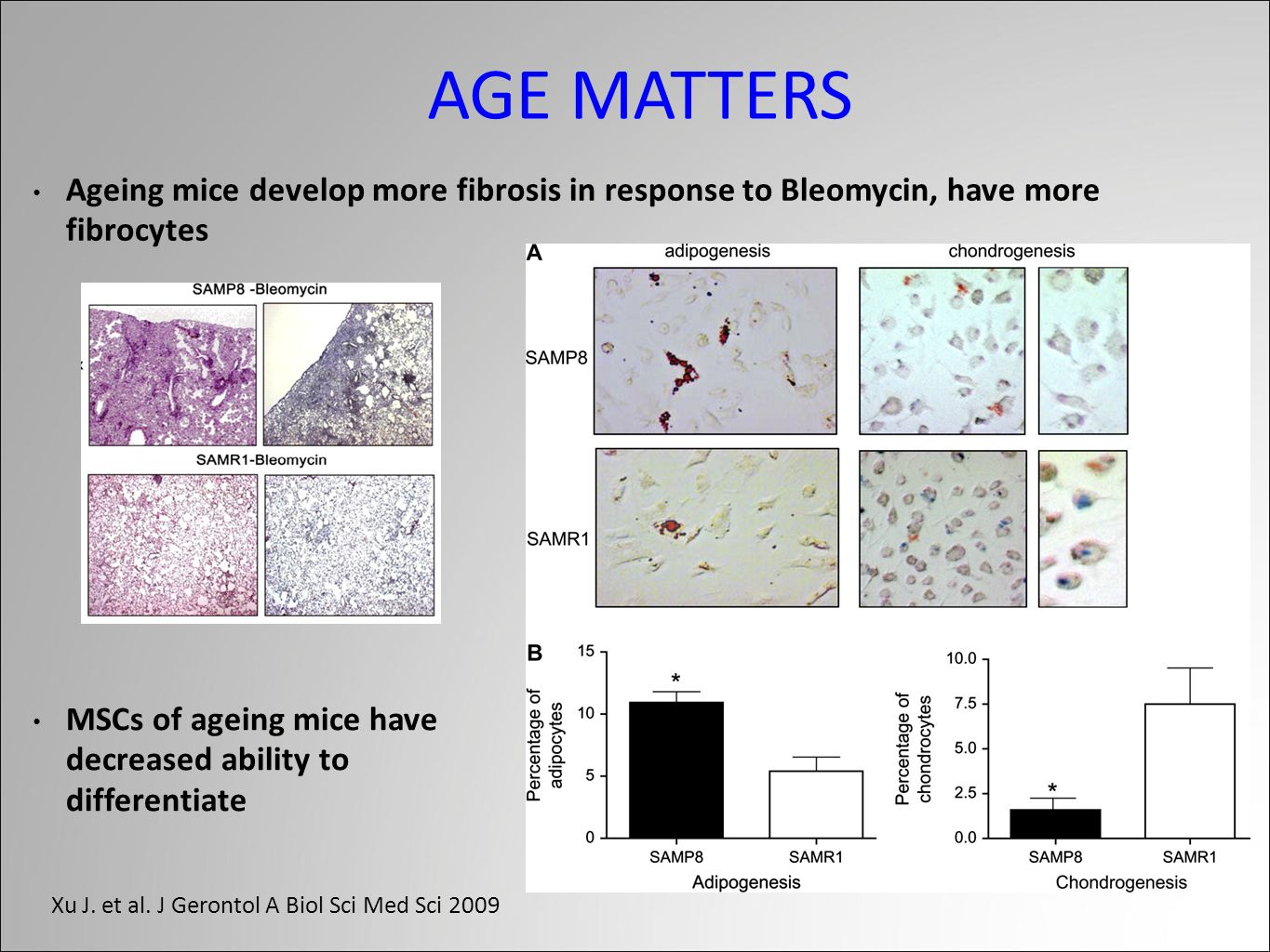 AGE MATTERS Ageing mice develop more fibrosis in response to Bleomycin, have more fibrocytes. Xu J. et al. J Gerontol A Biol Sci Med Sci 2009.