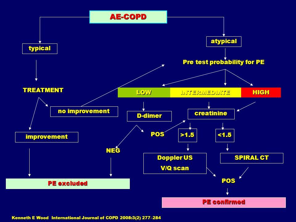 Kenneth E Wood International Journal of COPD 2008:3(2) 277–284