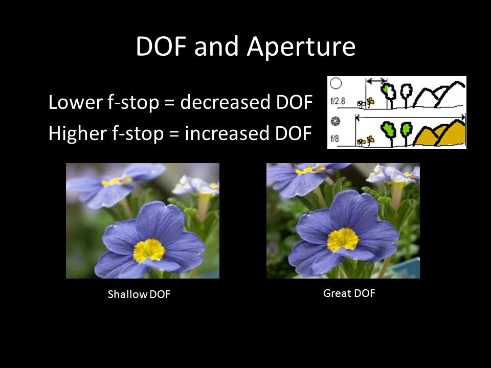 DOF and Aperture Lower f-stop = decreased DOF Higher f-stop = increased DOF Shallow DOF Great DOF