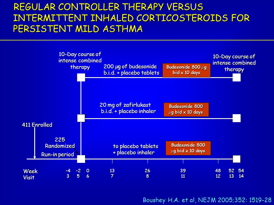 REGULAR CONTROLLER THERAPY VERSUS INTERMITTENT INHALED CORTICOSTEROIDS FOR PERSISTENT MILD ASTHMA