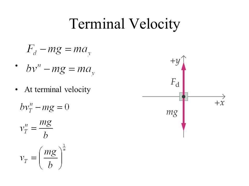 terminal velocity weight amp area ppt download