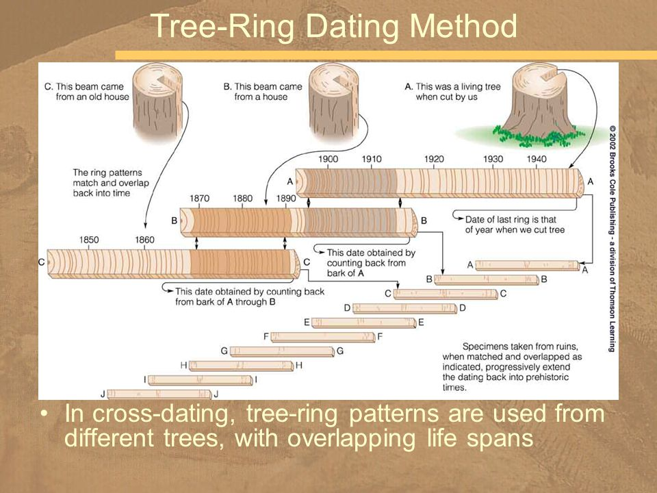 Tree ring dating methods