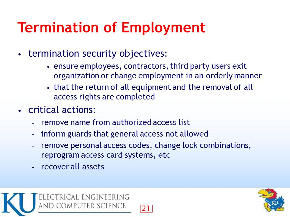 The Reasons for Job Termination