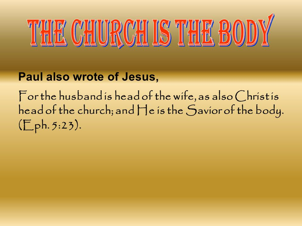 THE CHURCH IS THE BODY Paul also wrote of Jesus,