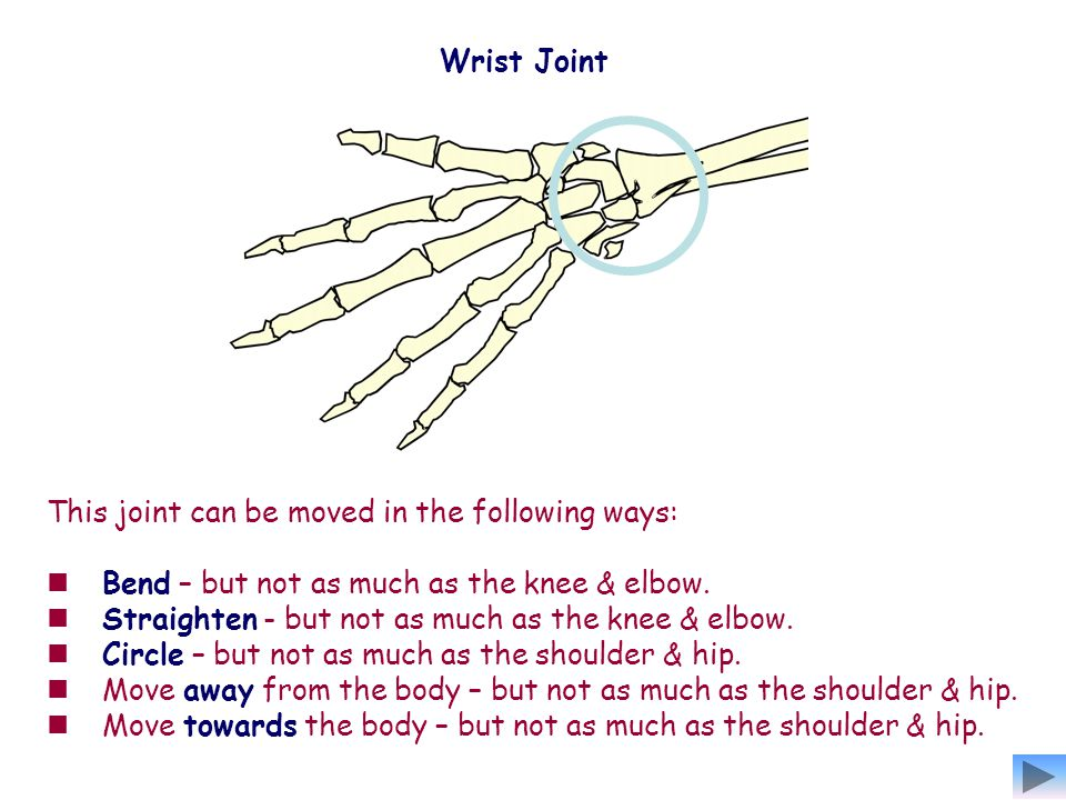 Wrist Joint This joint can be moved in the following ways: Bend – but not as much as the knee & elbow.