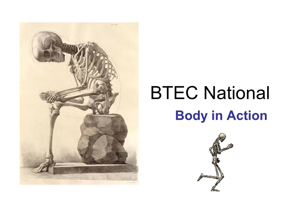 BTEC National Body in Action