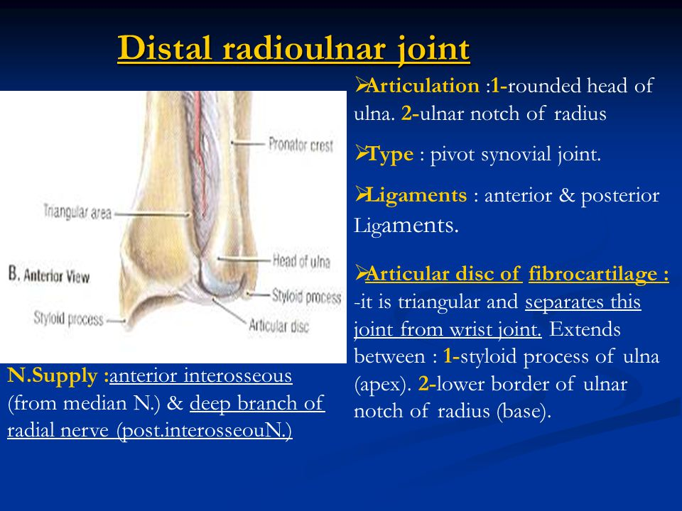 Distal Radioulnar Joint Ligaments