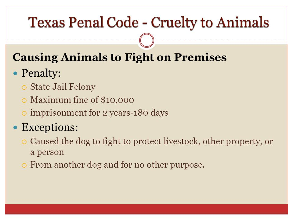 Texas penal code assault dating violence