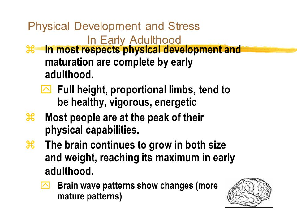 Physical development of adults nice idea