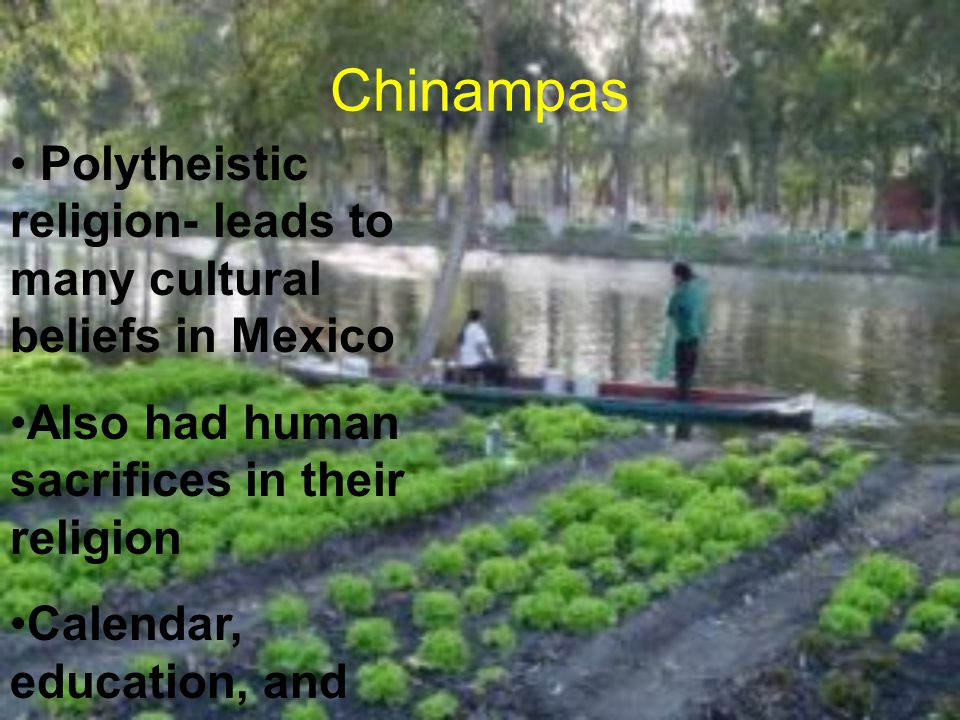 Chinampas Polytheistic religion- leads to many cultural beliefs in Mexico. Also had human sacrifices in their religion.