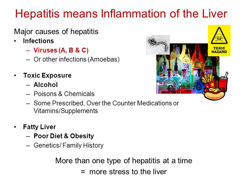 Hepatitis means Inflammation of the Liver