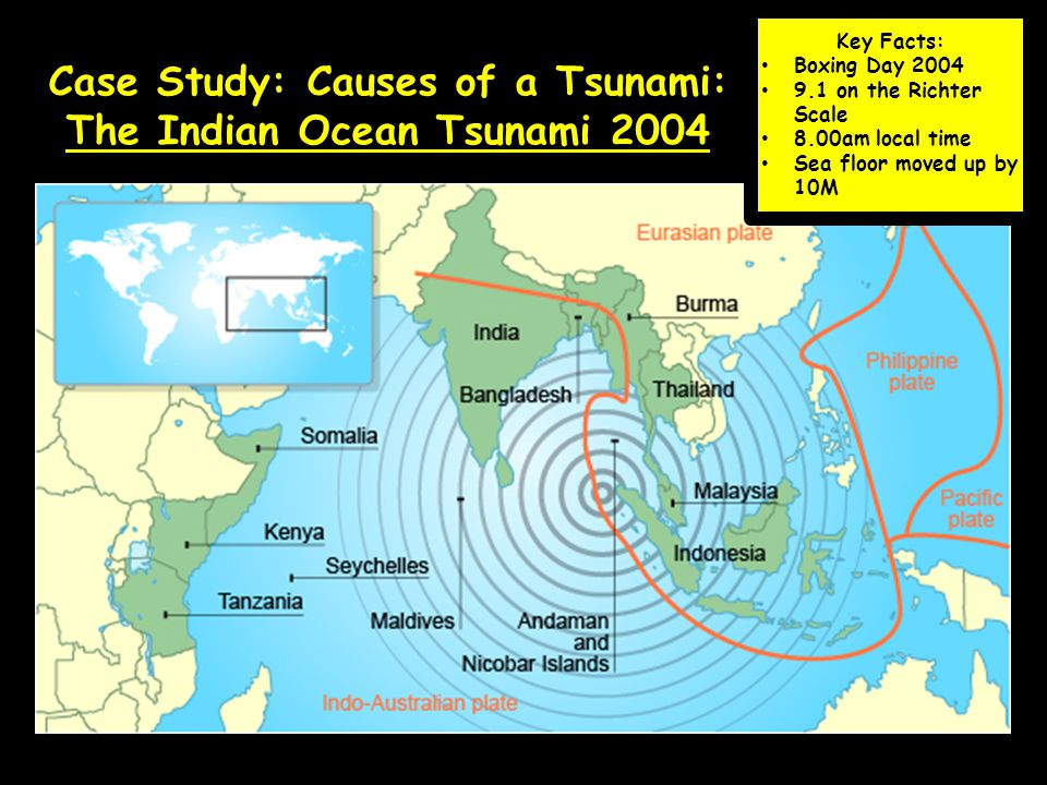 boxing tsunami case study This page is about how tsunamis occur, plus a case study of the boxing day tsunami of 2004.